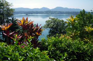 Lake Kenyir resort and Spa