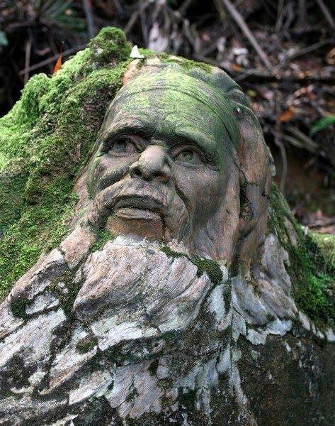 Las misteriosas esculturas de william ricketts