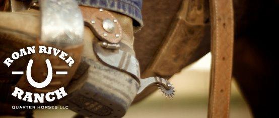 Roan River Ranch Quarter Horses