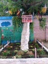 EL JARDIN: PLANTAS Y FLORES