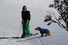 Skiing with man's best friend
