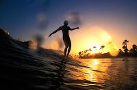 TidalStock Surf