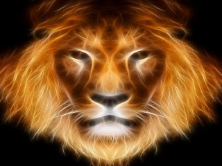 3D Lion