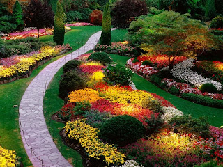 Garden Colors wallpapers