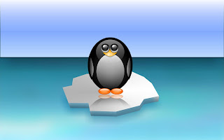 3D Cute Penguin wallpaper