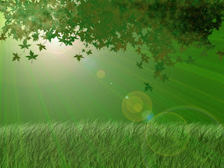 Green Leafs In Light wallpaper