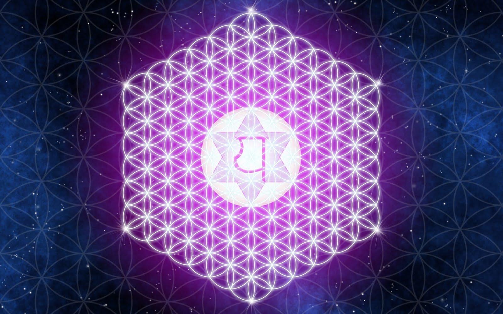 http://1.bp.blogspot.com/_Ym3du2sG3R4/TDZOobrXGKI/AAAAAAAACm4/4dWe42Lny3c/s1600/3D-Abstract-Pink-wallpaper.jpg
