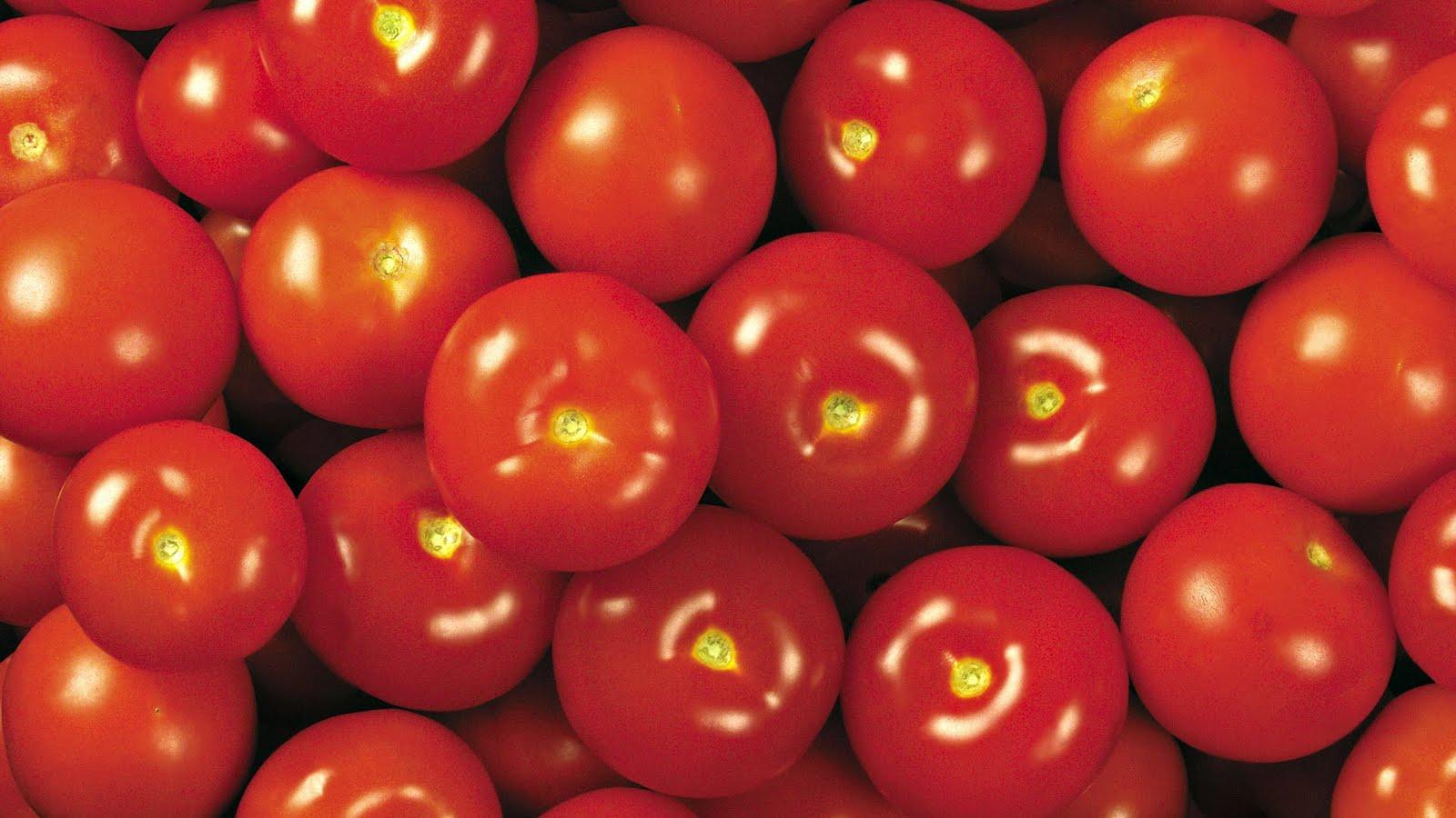 http://1.bp.blogspot.com/_Ym3du2sG3R4/TE4WrTiH9AI/AAAAAAAACr4/qa1az6eMpeY/s1600/tomato-wallpaper.jpg
