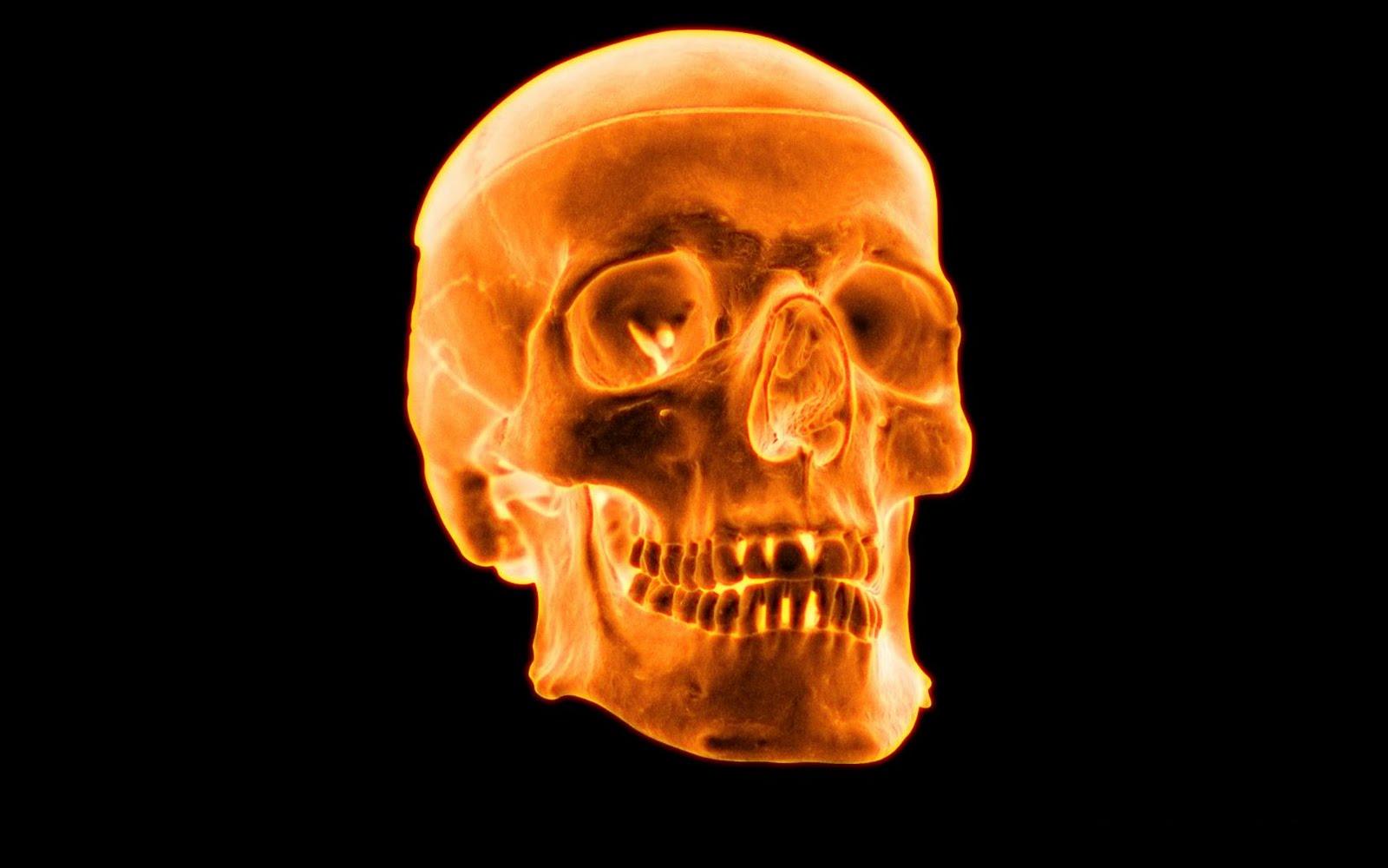 http://1.bp.blogspot.com/_Ym3du2sG3R4/TFyCXS2lQAI/AAAAAAAACuU/Ef7hcsW_MbU/s1600/3D-Fire-Skull+(3).jpg