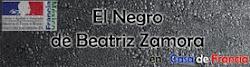 El Negro de Beatriz Zamora
