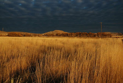 Wintry clouds close in on golden fall field. (©Ted Pease 2009)