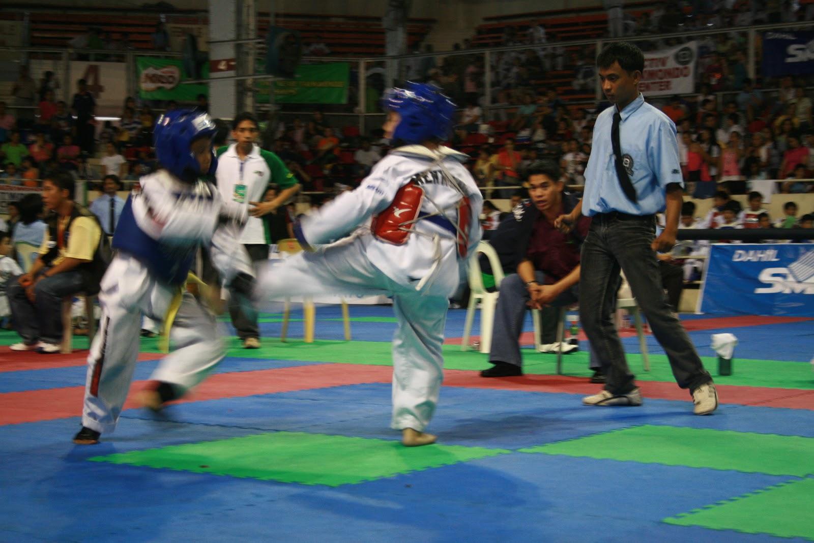 Philippine Taekwondo Association