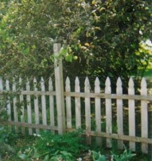 my garden in 1997