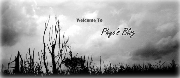 Phyo's Blog