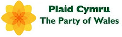 Plaid Cymru new site for May Elections!