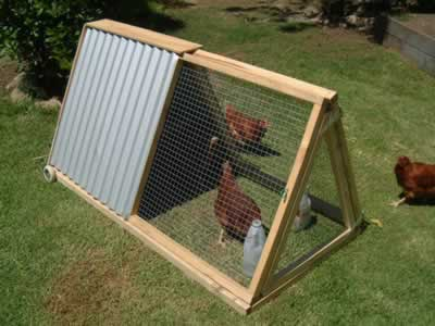 how to build a simple chicken coop for 6 chickens