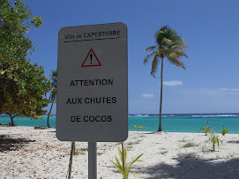 Attention chutes de cocos!!!!!!!!