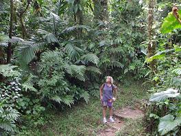 Derniere balade en Martinique