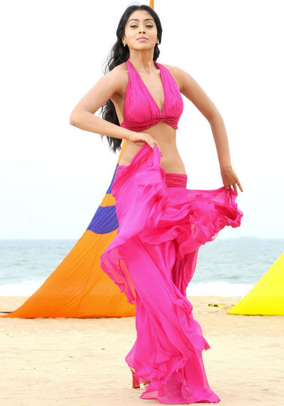 Shriya in Pink Gown, Latest Pictures of Shriya Online