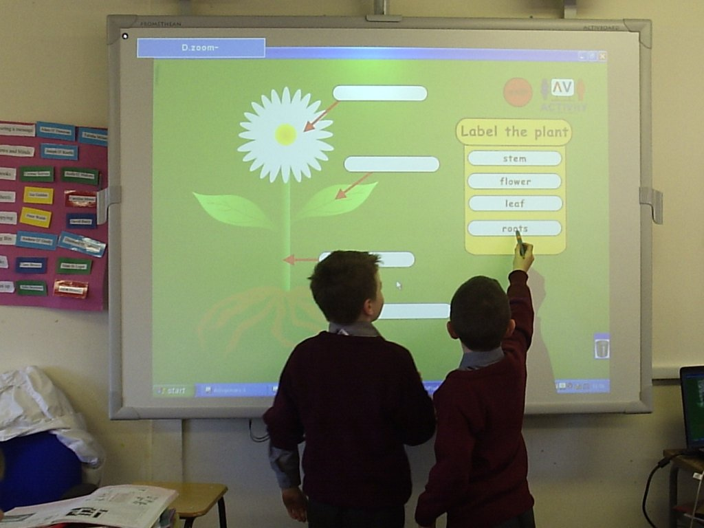 An example of an interactive lesson on an IWB. The children are working together to complete the assignment on the board.
