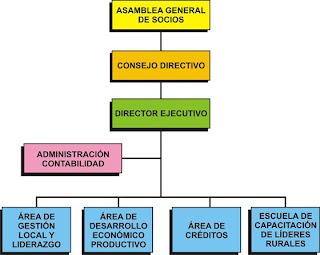 Organizacion organizaci n staff for Organizacion de un vivero