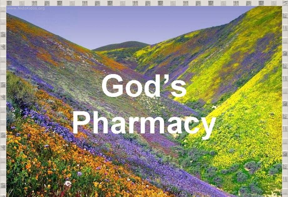 Think loud god 39 s pharmacy for God s garden pharmacy