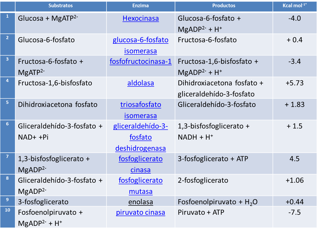 glucolisis reacciones:
