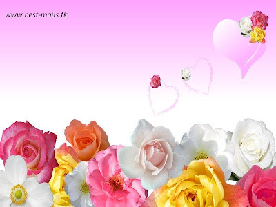 flower wallpapers. Beautiful Flower Wallpapers