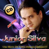 Novo Cd Do Junior Silva Vol.3