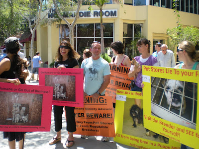 pet store protest in West Hollywood