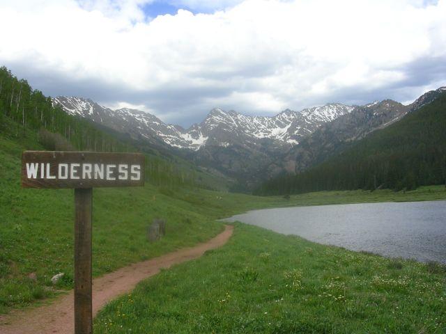 http://1.bp.blogspot.com/_Z-DEoN3ydt4/S7uiUIgLGJI/AAAAAAAABOU/z5JplfRiA8E/s1600/Wilderness.jpg