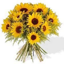 Ricardo Calmon, flores para um anjo! Do blog Viver é Pura magia!