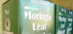 EDYM's Moringa Tea