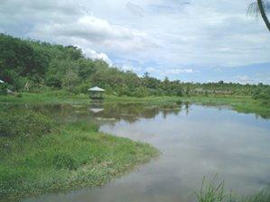 Danau Mandor