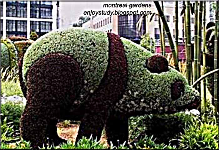 garden sculptures-montral garden canada,garden of birds,frogs and animals
