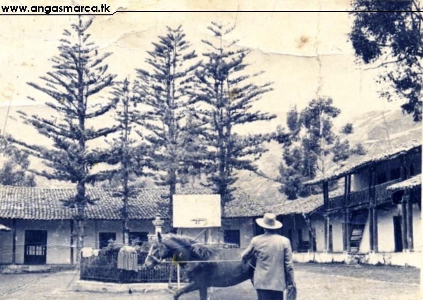 Un empleado de la Hacienda amansando un caballo - 1960 Aprox.