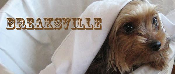 Breaksville