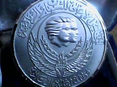 احدى الميداليات الفضية التى حصلت عليها