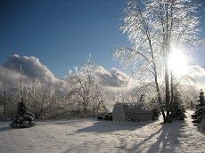 A Cold Winter's Day