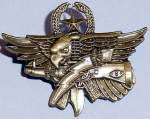 Master Tactical Operator Badge