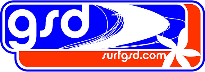 junior surfing lessons, surf blog, surf blogs.swanseasurfing, gower surf school, surfgsd