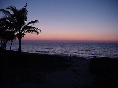 Why you should get married on a Cayman Beach, favourite Cayman Wedding spots - image 4