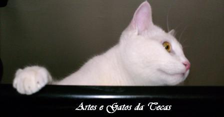 Artes e Gatos da Tecas