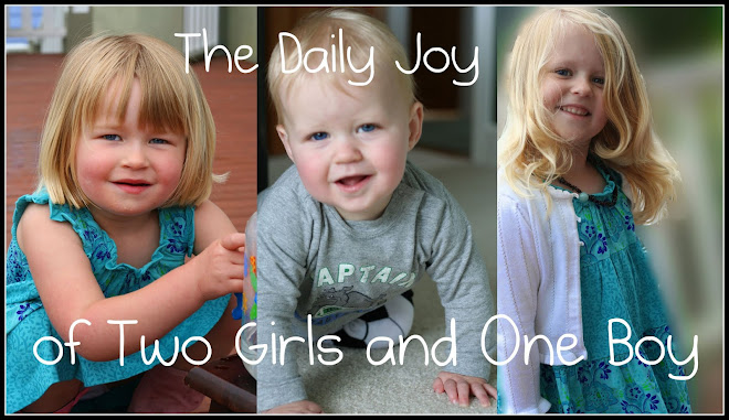 The Daily Joy of Two Girls and One Boy