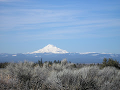 MT HOOD - Picture taken from the eastside of the mountain on the Warm Springs Reservation.
