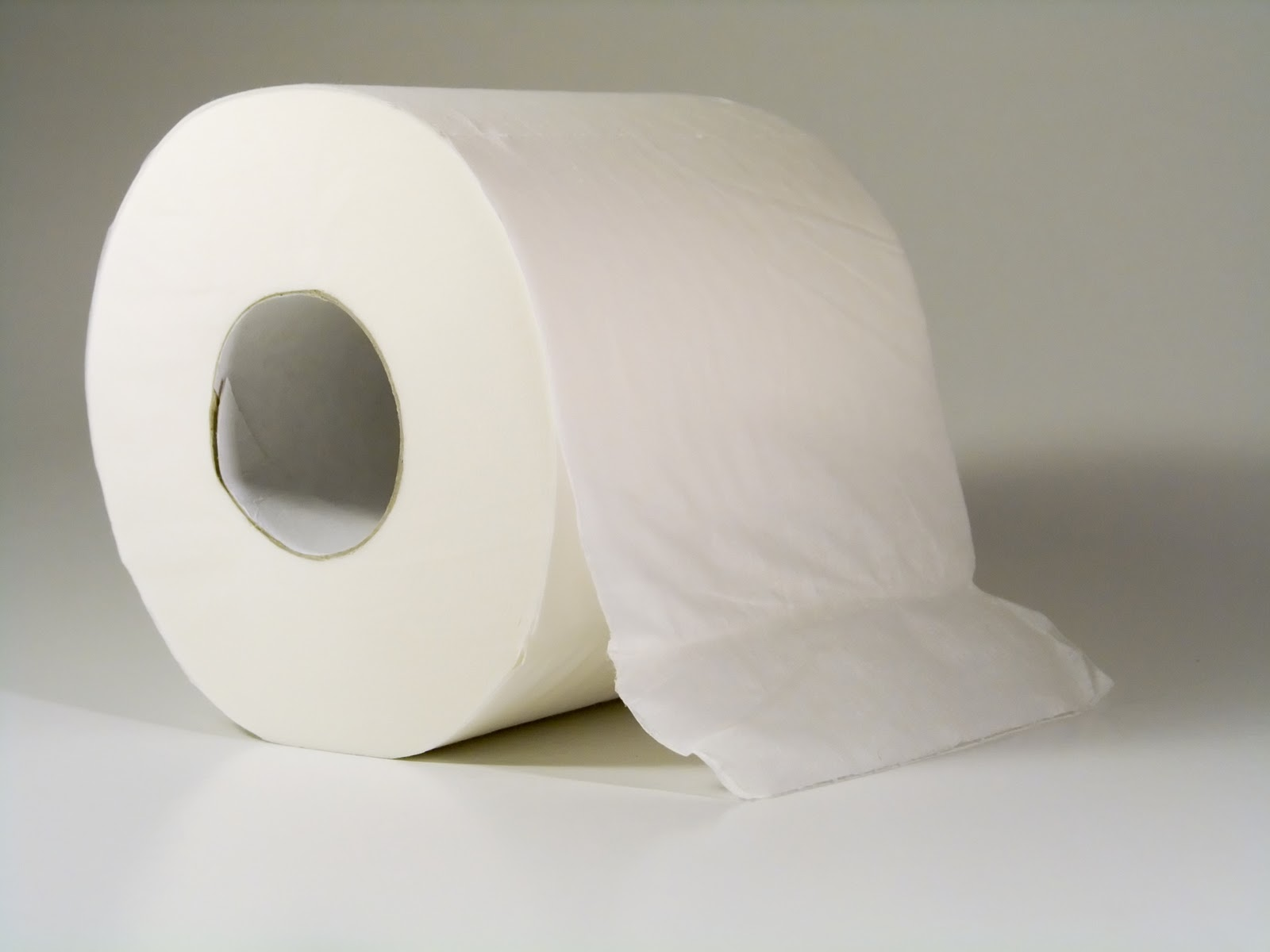 And the toilet paper should always hang down the front, like this one ...