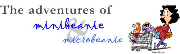 The Adventures of minibeanie and microbeanie