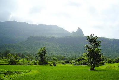 The foothills of Bhimashankar