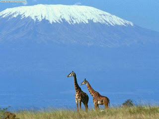 Mount Kilimanjaro. Yesterday.