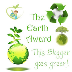 Earth Award!